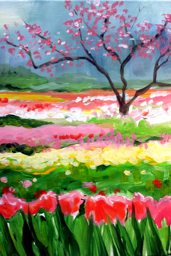 Tulip Field new