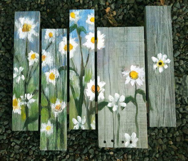 Daisy Boards